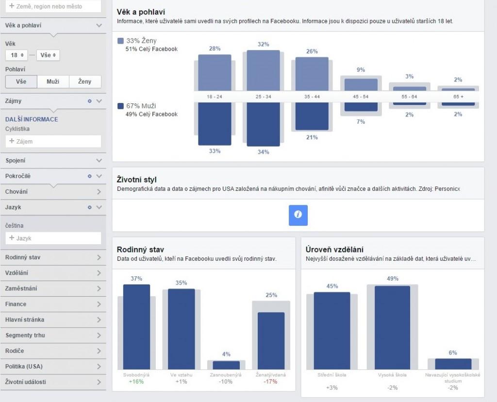 Audience Insights - Google Chrome